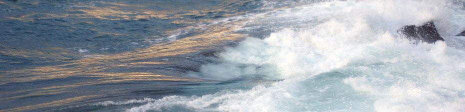 Charlotte charbonnel - .wave / 2007