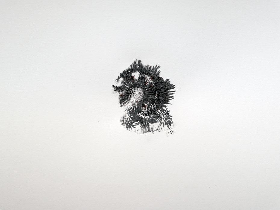 limaille-fossilisee-pt-2-collection privée-Charlotte Charbonnel