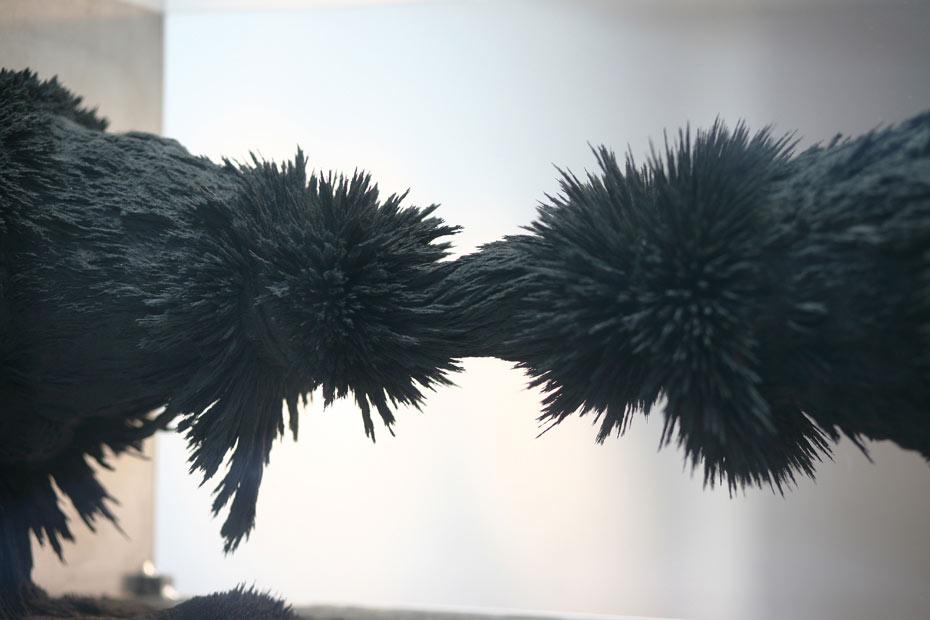 resonarium-vitrine-9-galerie Backslash-Charlotte Charbonnel